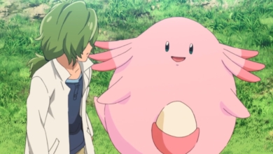 Photo of Chansey: A Review