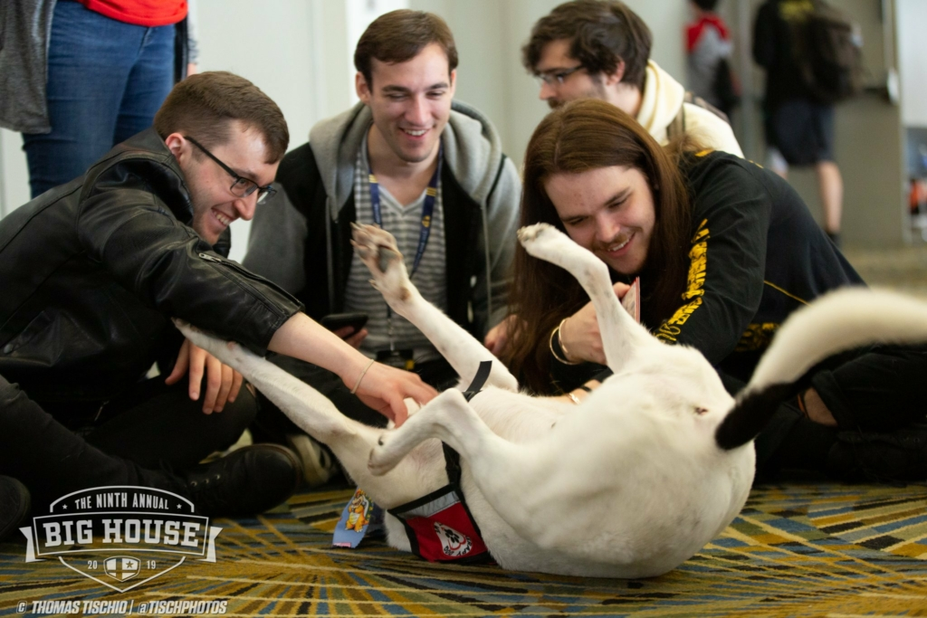 Players rub a dog's belly at The Big House