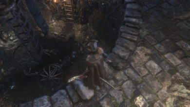 Photo of Bloodborne Players Crowd-Document All 2300 Root Chalice Dungeons