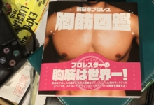 Photo of A Comprehensive Review of the New Japan Titty Book
