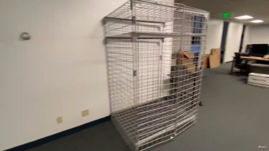 Photo of The Man-Sized Cage in Our Office: A Review