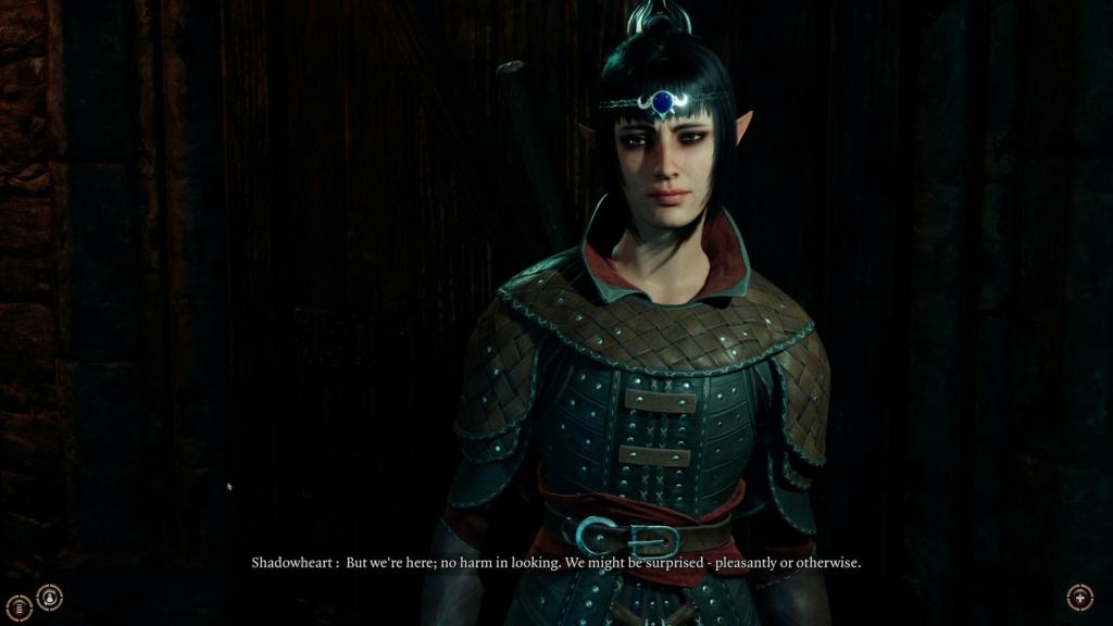 Baldurs Gate 3 Origin