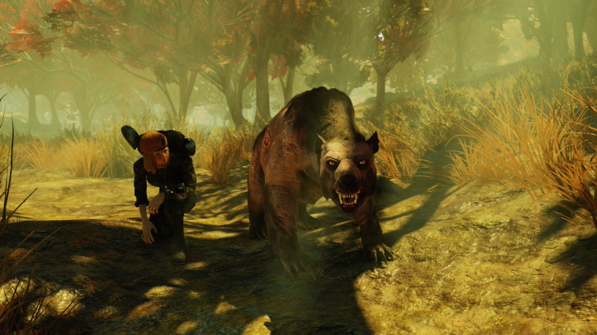 Photo of Fallout 76 Players Are Turning The Game Into A Pet Sim