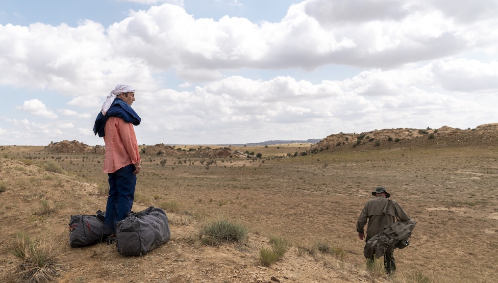 Photo of Better Call Saul Season 5 Episode 8 'Bagman' Review
