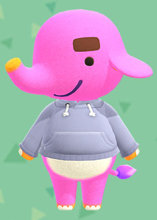 animal crossing paolo