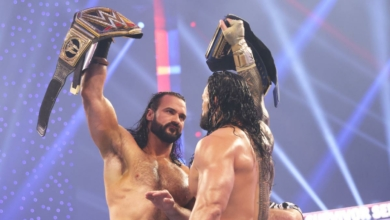 Photo of WWE Survivor Series Recap and Review: The Best of the Best (But Actually):