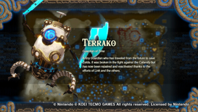 Photo of How to Unlock Terrako in Hyrule Warriors: Age of Calamity