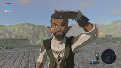 Photo of Modder Claims Breath of the Wild's NPCs Are Created Using Advanced Miis