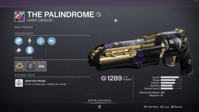 Photo of Destiny 2 Palindrome Guide – How to Get It & the God Roll