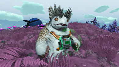 Photo of No Man's Sky Companions Customization Guide – What Each Accessory Does