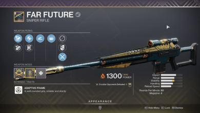 Photo of Destiny 2 Far Future Guide – How to Get It & God Rolls