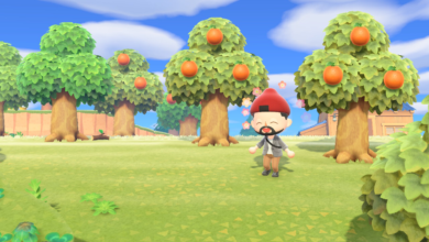 Photo of My Neglected Animal Crossing Island is Too Much of a Wasteland for the Island Tour Creator