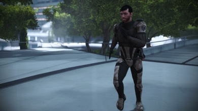 Photo of Commander Shepard's Stamina: A Review