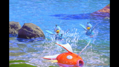 Photo of The Best New Pokemon Snap Pictures Are the Bad Ones