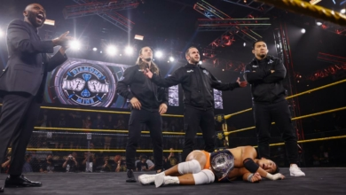 Photo of NXT's Diamond Mine: A Review