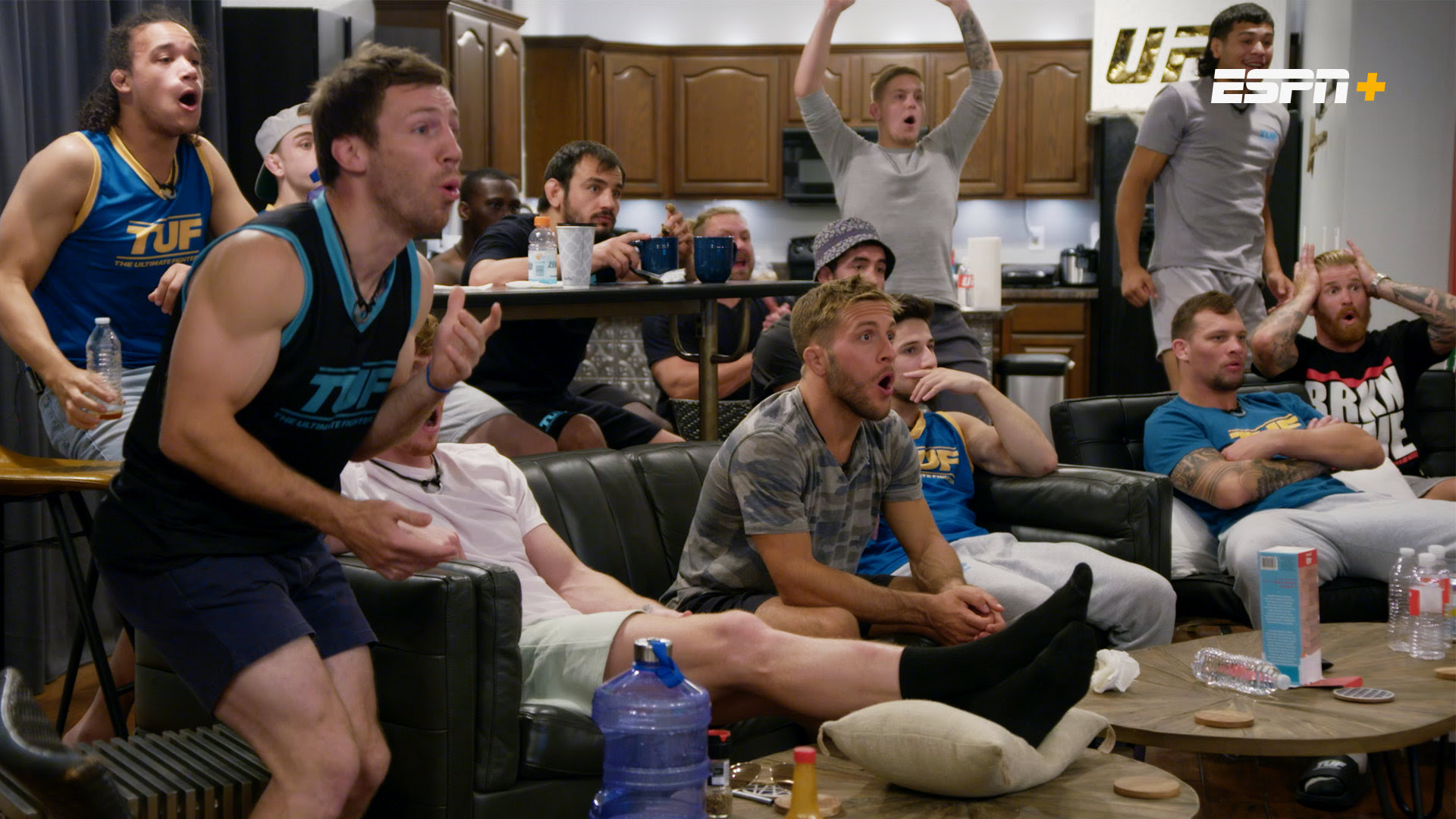 the ultimate fighter 29 watching ufc 261