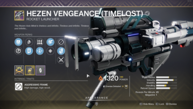 Photo of Destiny 2 Timelost Weapons Guide – How to Get Timelost Guns
