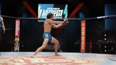 Photo of The Ultimate Fighter 29, Episode 6: A Review